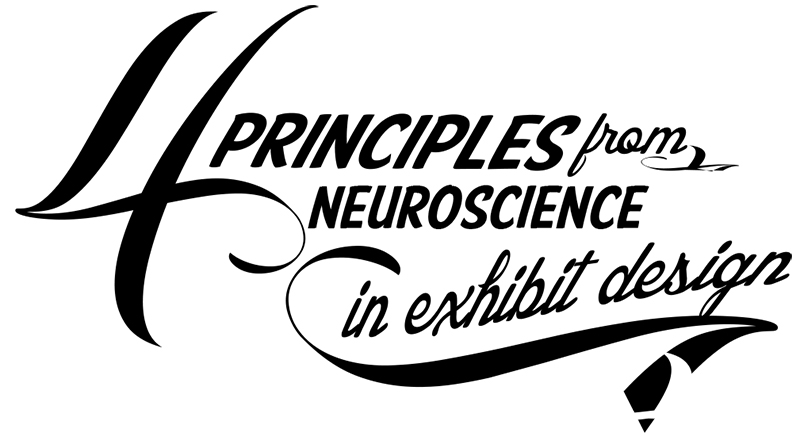 neuroscience_in_exhibit_design
