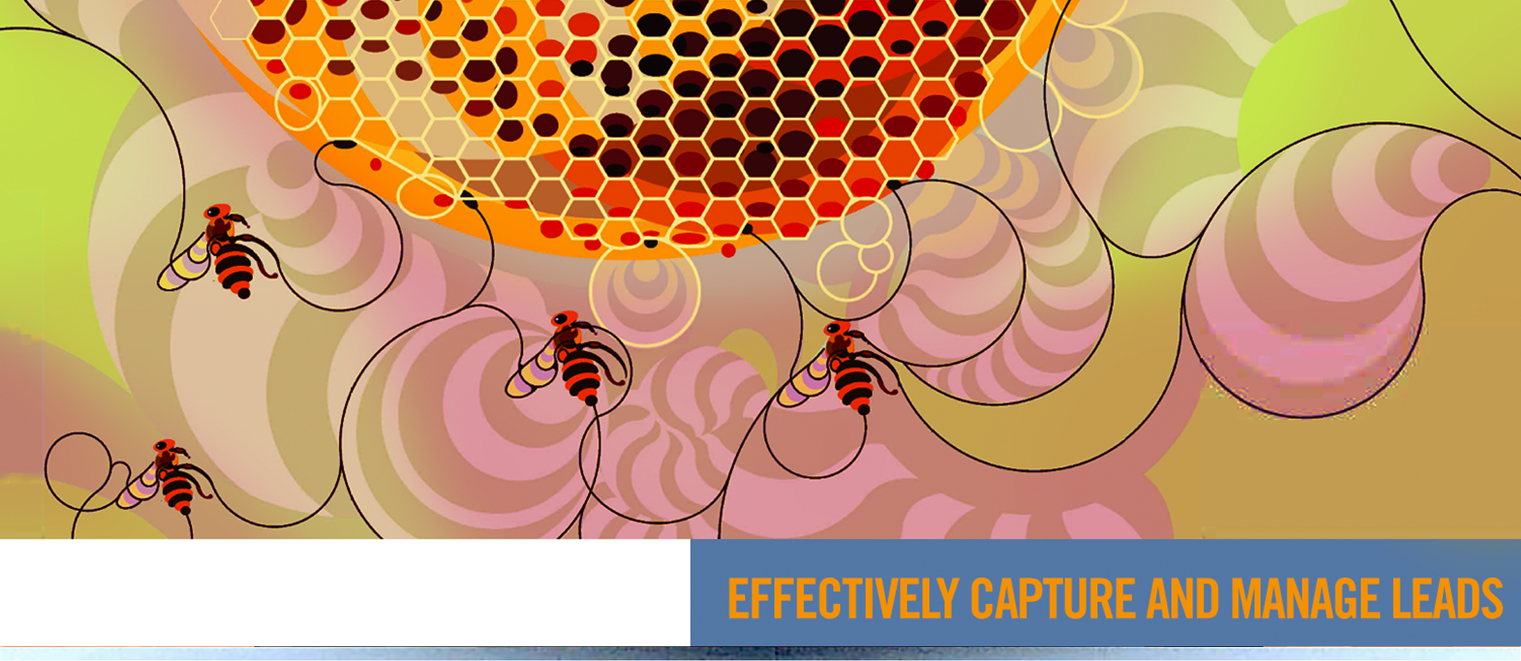 EFFECTIVELY CAPTURE AND MANAGE LEADS