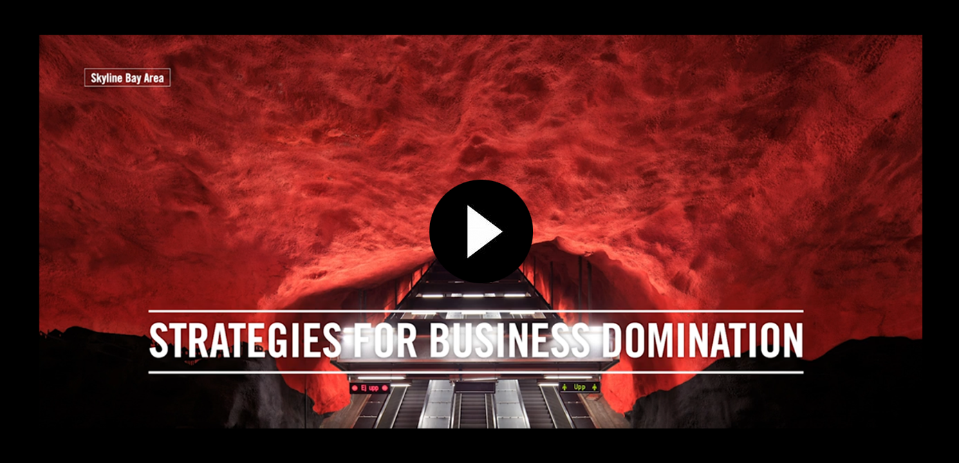 strategies for business domination